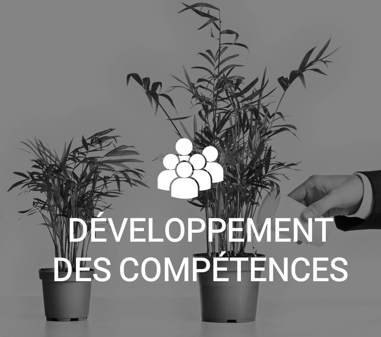 Des leviers de progression pour développer l'expertise